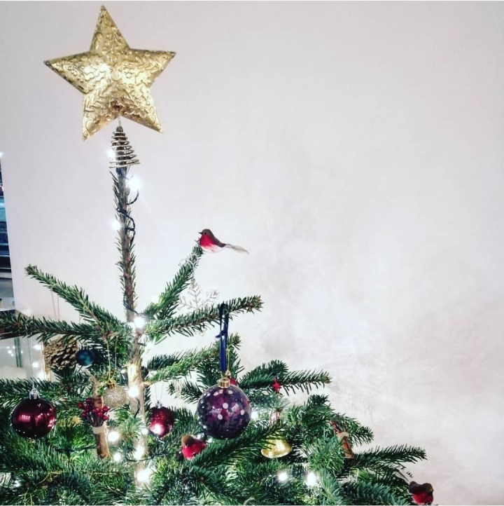 BLOGMAS DAY 5: Our First Christmas Tree!