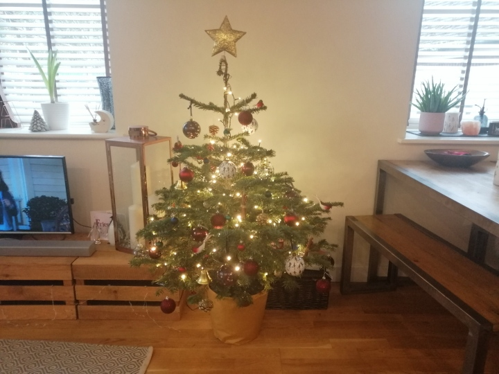 The tree is up!